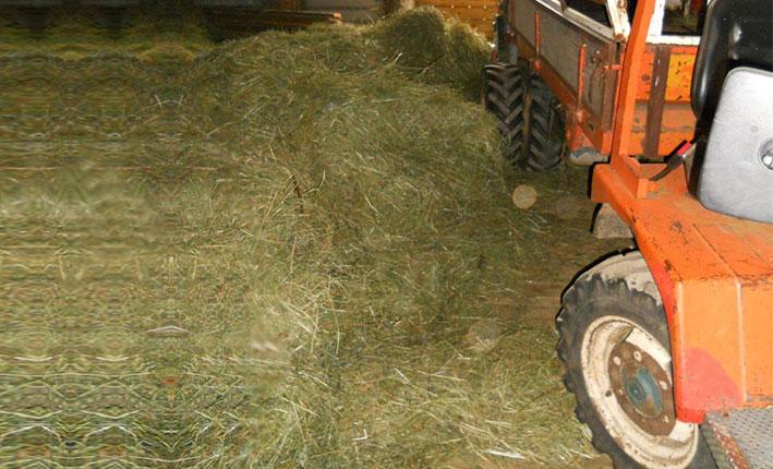 traktor-auf-tenne